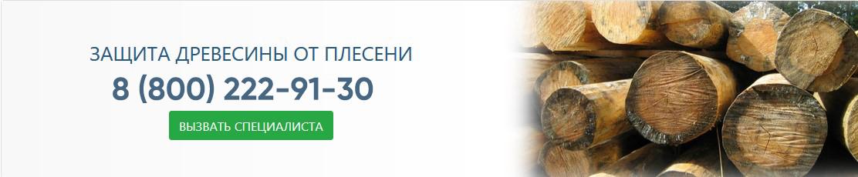 Защита древесины от плесени. Лечение и профилактика древесины в Москве и Московской области.